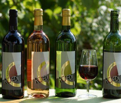 Rüedis Weinflaschen mit Gläser